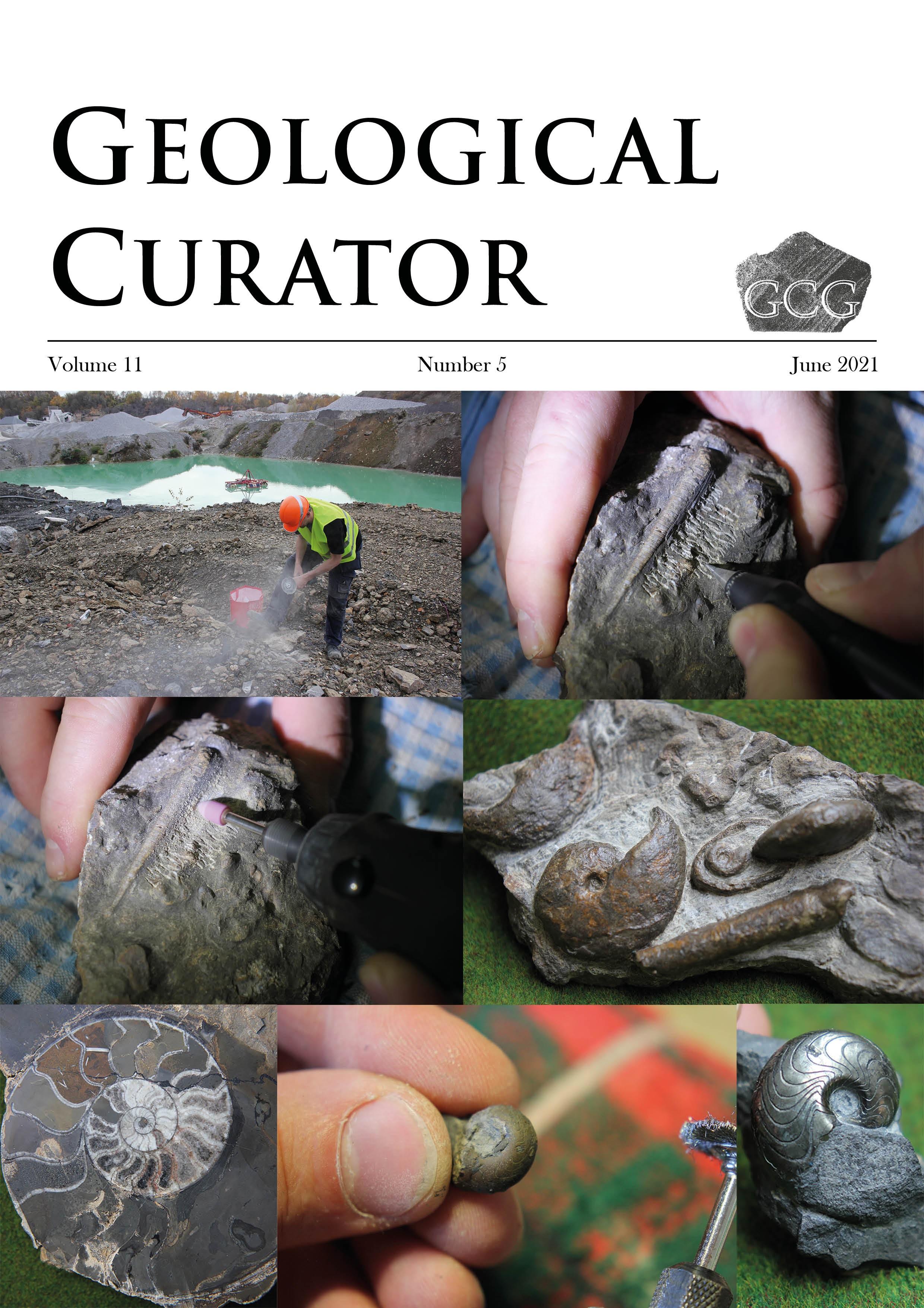 Geological Curator 11(5)